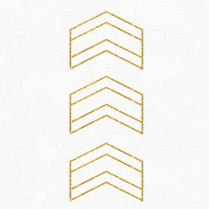 arrows-icon