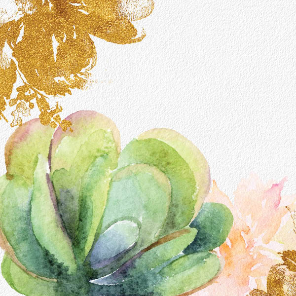 Succulent graphic